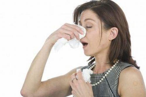 allergia-alla-polvere